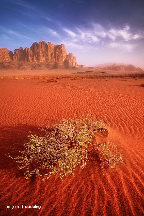 Limited Edition Print - Wadi Rum