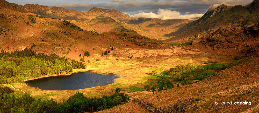 Limited Edition Print - Blea Tarn